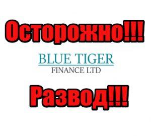 Blue Tiger Finance